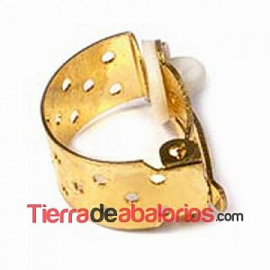 Pendiente Medio Aro Regadera 18x8mm, Dorado