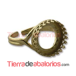 Anillo Ajustable con Ribete 14mm, Dorado