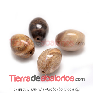 Fósil Oval Natural 24x18mm Agujero 2mm