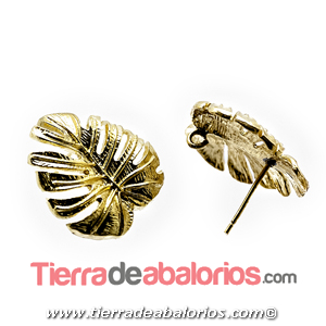 Pendiente Hoja Monstera 19x19mm con Anilla, Dorado