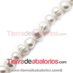 Perla Cultivada Irregular 6x4mm